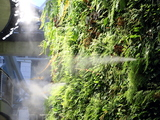 IMG_2465_spheres_green_wall.jpg